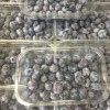 Local Blueberries - *Now Available*  24/07/17