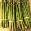 LOCAL Asparagus - Now Available - 08/05/16