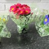 Potted Primroses For Mothering Sunday 01/03/16
