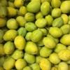 *New Arrivals* Greengagers, Local Chidham Broccoli & Victoria Plums 03/08/17