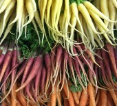 Local Heritage Carrots. Supreme Quality *Now Available*  22/08/17