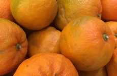 Seville Oranges *Now Available*  08/01/18