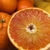 Blood Oranges have arrived! 10/01/16