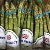 English Asparagus has arrived! 15/04/16
