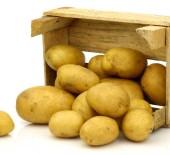 New Season Bakers & Main Crop Potatoes
